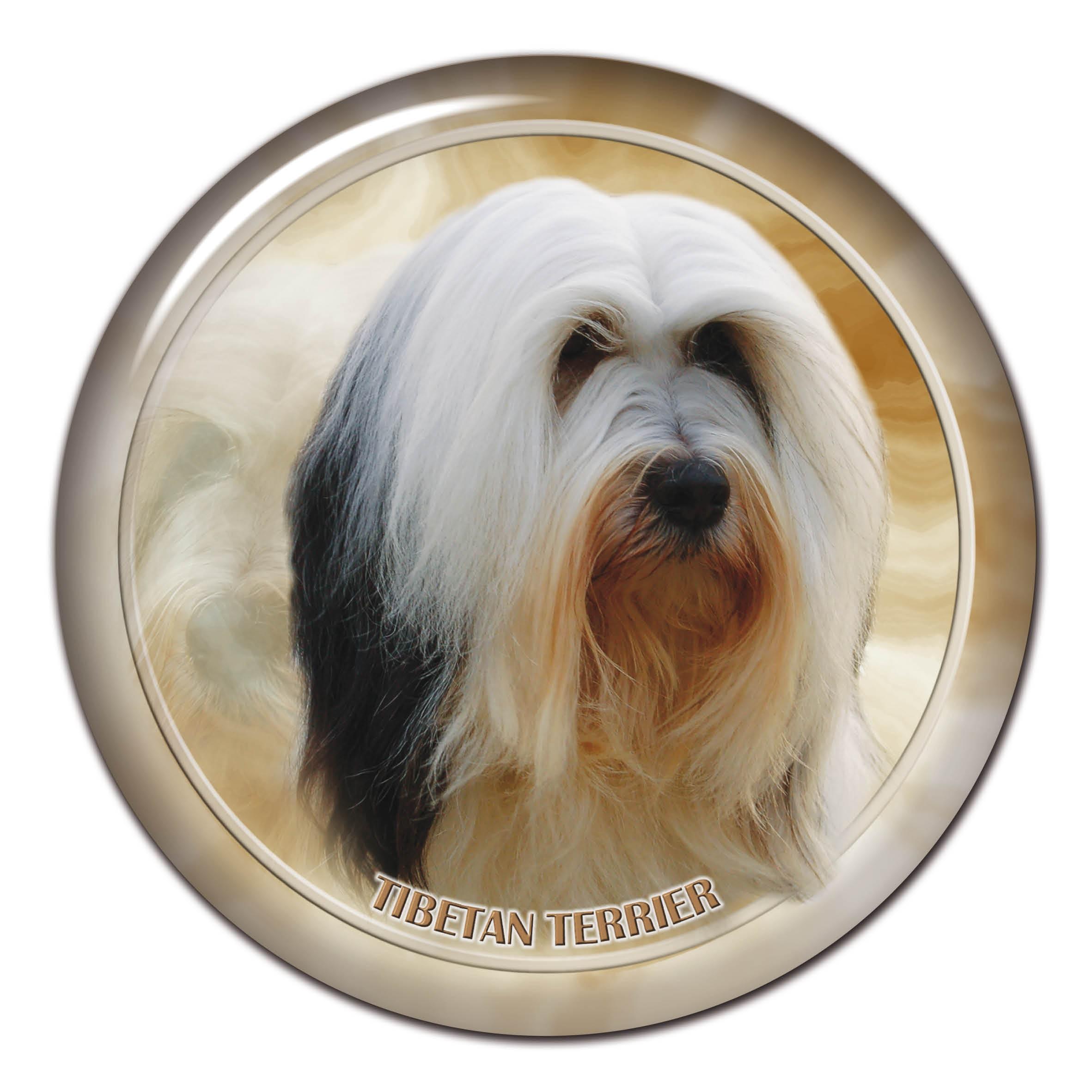 3D sticker Tibet Terrier 101 C from AllDogStickers.com ...