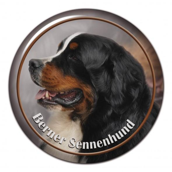 Berner Seenenhund