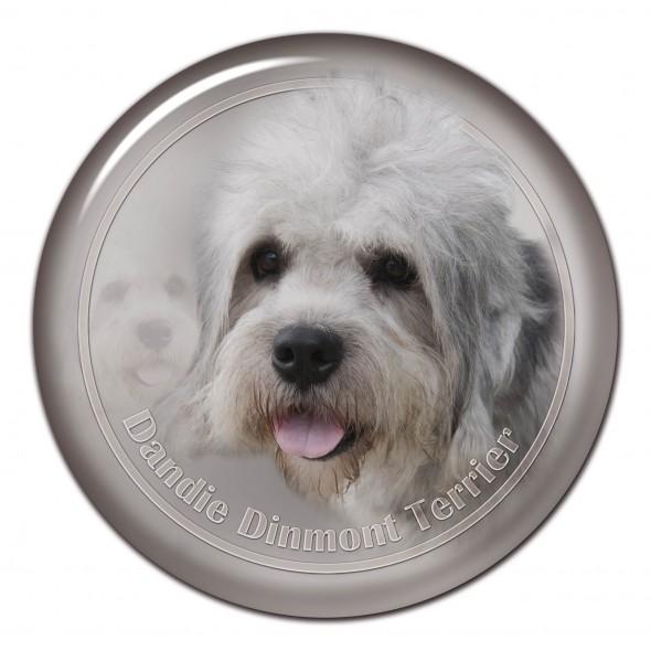 Dandie Dinnmont Terrier