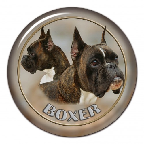 3D sticker Boxer 101 C