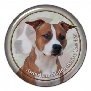 American Staffordshire Terrier 102 C