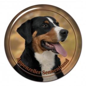 Appenzeller Seenenhund 101 C