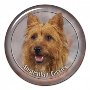 Australian Terrier 102 C