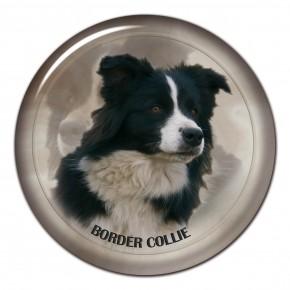 Border Collie 101 C