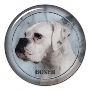 Boxer 106 C