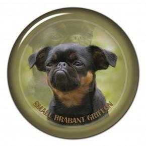Brabant Griffon Small 101 C
