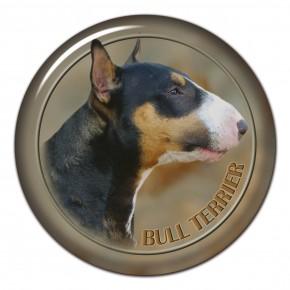 Bull Terrier 101 C