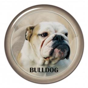 Bulldog 101 C