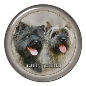 Cairn Terrier 101 C