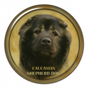 Caucasian Shepherd Dog 101 C