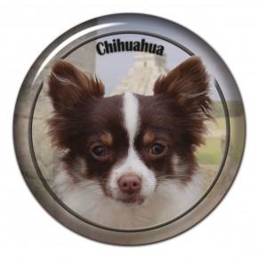 Chihuahua 103 C