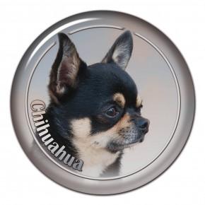 Chihuahua 104 C