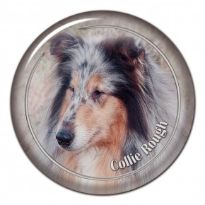 Collie Rough 102 C