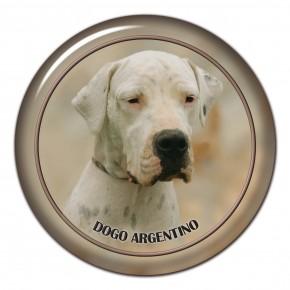 Dogo Argentino 102 C