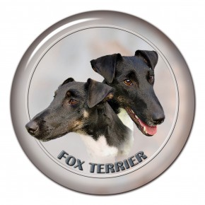 Fox Terrier 101 C