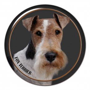 Fox Terrier Wire 102 C
