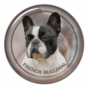 French Bulldog 102 C