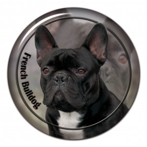 French Bulldog 103 C