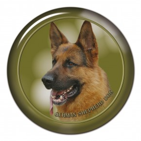 German Shepherd Dog 104 C