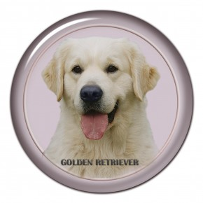 Golden Retriever 102 C