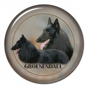 Groenendael 101 C
