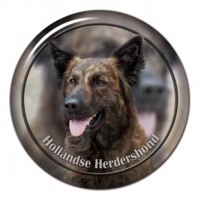 Hollandse Herdershond 101 C