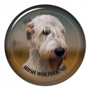 Irish Wolfhound 101 C