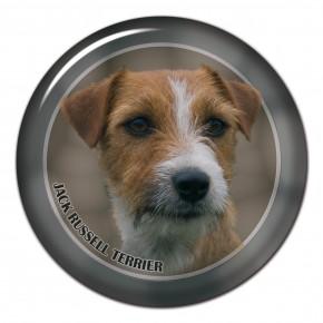 Jack Russell Terrier 102 C