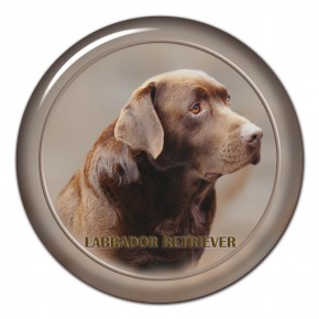 Labrador Retriever 102 C