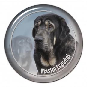 Mastin Espaniol 102 C