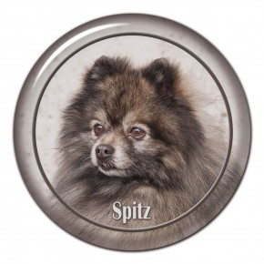 Spitz 104 C