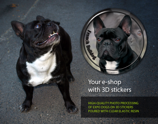 Your e-shop with 3D dog stickers